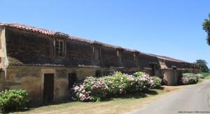 Salles d'Armagnac cop MSB-Pass'enGers avec filigrane