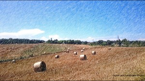 paysage cop MB-PassenGers avec filigrane