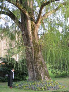Barbotan jardin Barthélémy Gers